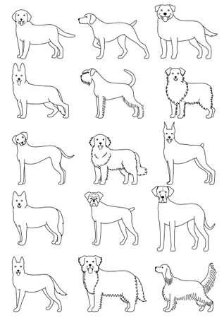 dog breeds line art set Illustration