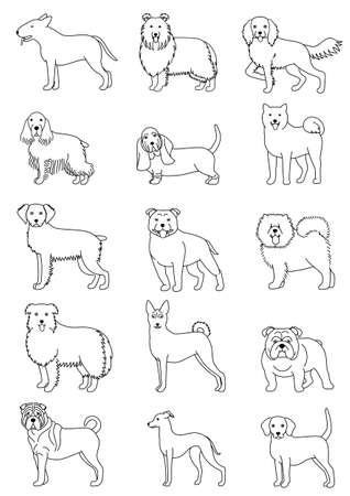 bullterrier: Medium dog breeds line art set