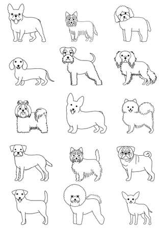 small dog breeds line art set