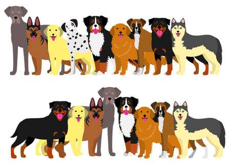 bernese: Border of large dogs set Illustration