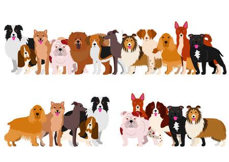 basset: Border of medium dogs set