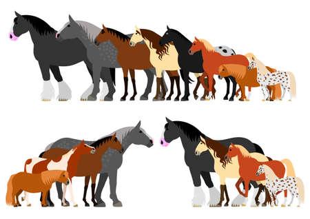Grenze der Pferde in der Reihenfolge der Höhe angeordnet Standard-Bild - 75166858