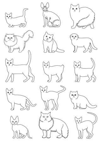 cats breeds set line art