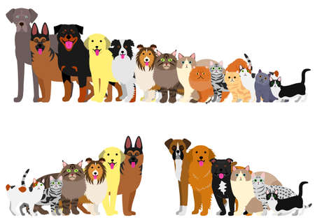 Border of dogs and cats arranged in order of height Stock Illustratie