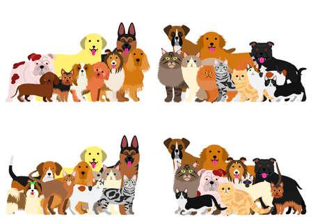 shetland: dogs and cast group border set