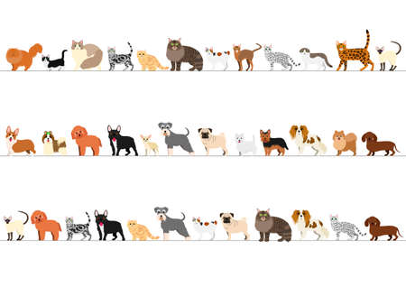 cute dog: standing small dogs and cats border set