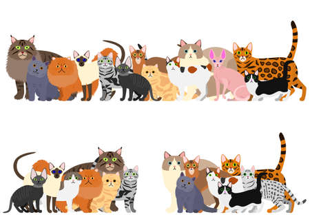 cats group border set
