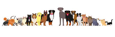 Border of dogs and cats arranged in order of height 일러스트