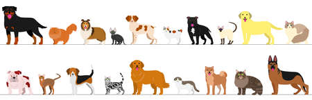 cute dog: standing dogs and cats border set Illustration