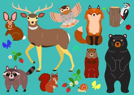woodland animals elements set Illustration