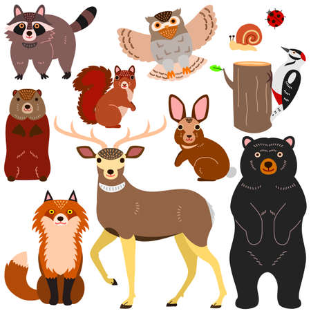 woodland animals elements set Stock Illustratie
