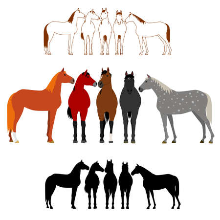 Set of horse group
