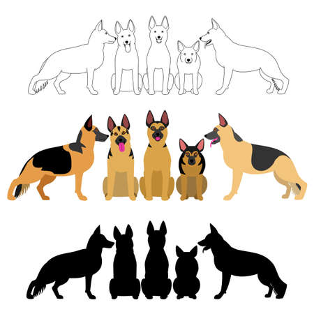 Set of german shepherd group