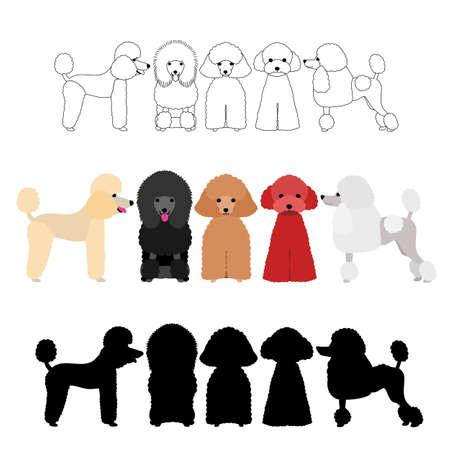 conjunto de grupo de poodle