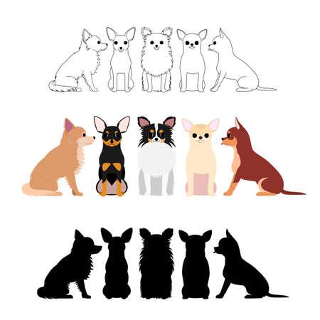 set of Chihuahua group