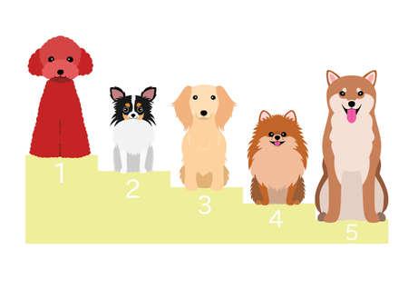popular dogs in Japan