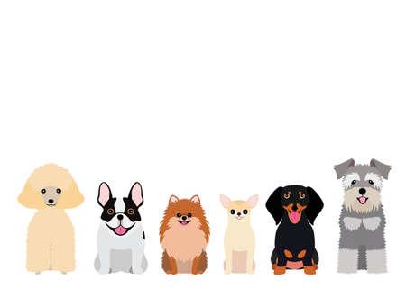 grupo sorridente de cachorros pequenos