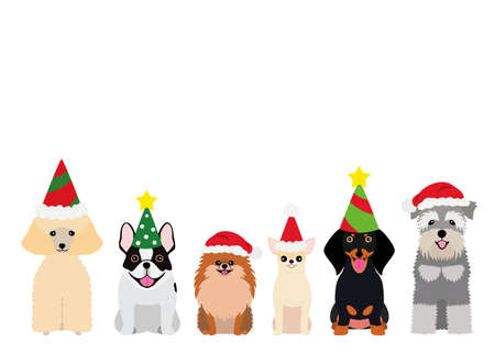 smiling small dogs with Christmas party hat