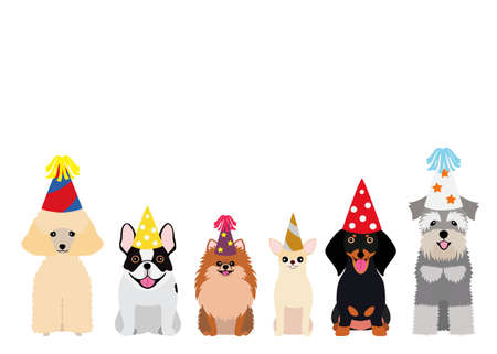 smiling small dogs with party hat
