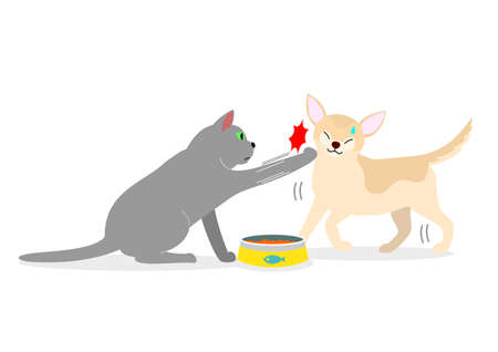 A cat punching dog to protect its food.