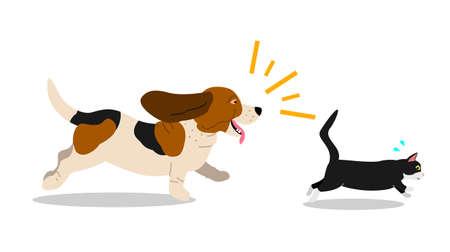 Hond die een kat achtervolgt