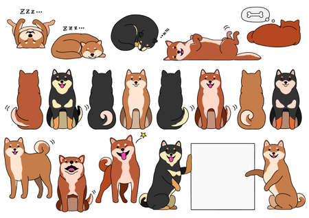 shiba inu elements with outline set