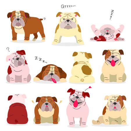 bulldog elements without outlines