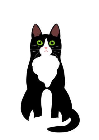 Tuxedo cat vector Ilustração