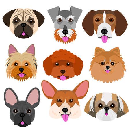 Cara de cachorro pequeno com língua de fora