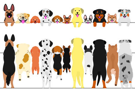 A standing dogs front and back border set