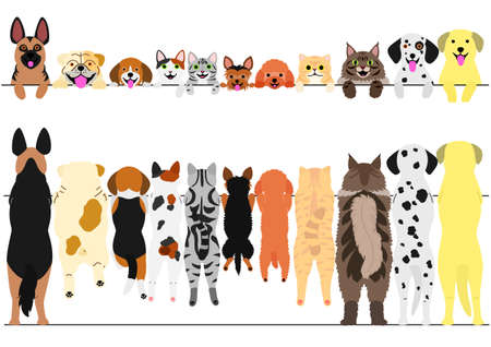 Standing dogs and cats front and back border set illustration. Stock Illustratie