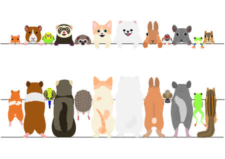 Standing pet animals front and back border set