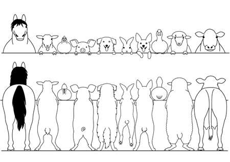 Standing farm animals front and back border set Illustration