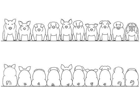 Breeds of pigs image