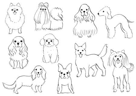 X Small Dogs