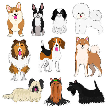 Group of small dogs hand drawn vector Illustration.