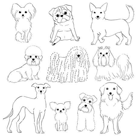 group of small dogs hand drawn line art Vector illustration.