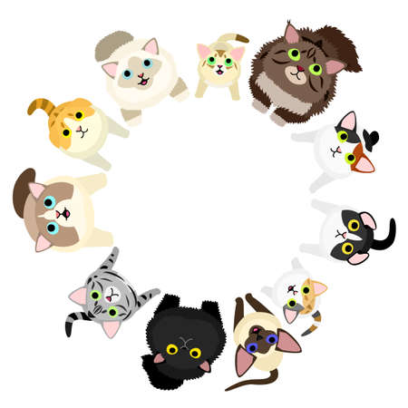Sitting cats looking up circle