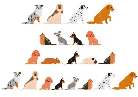 Various dogs border set isolated on white Archivio Fotografico - 100464466