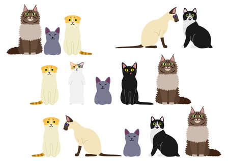 Cute felines border set Illustration