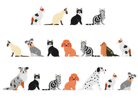 dogs and cats border set Stock Illustratie