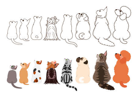 cats and small dogs looking up sideways in a row Ilustração