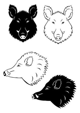 Wild boar head icon set isolated on a white background  イラスト・ベクター素材