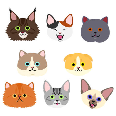 cute kittens face set 向量圖像