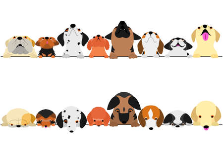 cute dogs looking up and down border set