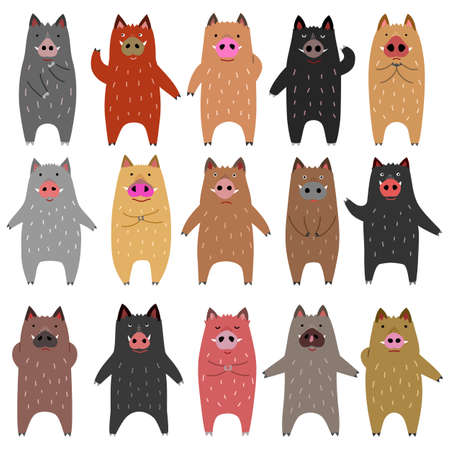 set of funny boars  イラスト・ベクター素材