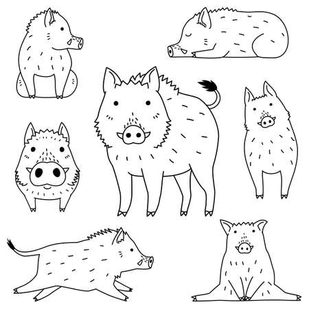 cute wild boar doodle drawing set  イラスト・ベクター素材