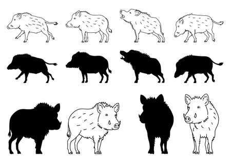 Wild Boar elements