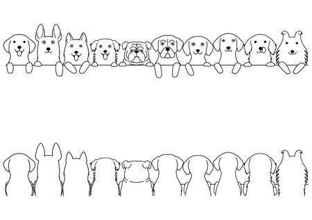 border set dogs, large dogs, front side and back side