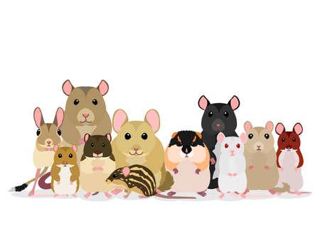 groupe de souris